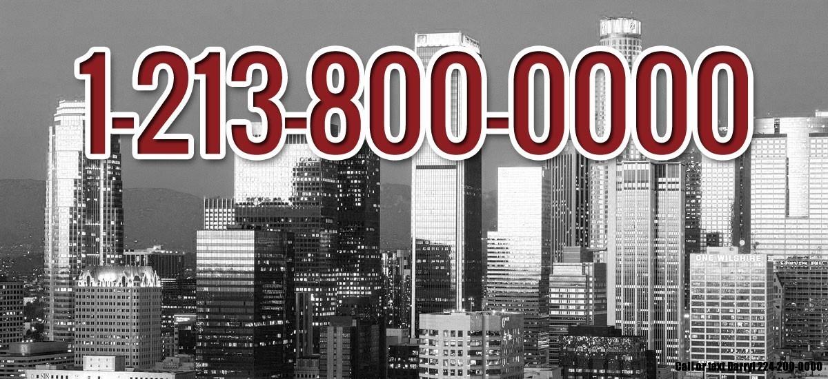 1-213-800-0000